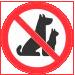 Proibido Animais